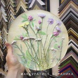 Ботанический барельеф, гербарий